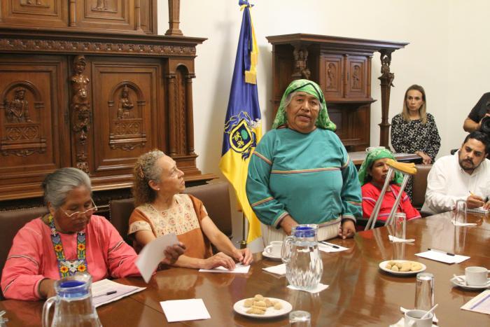 Trini Carrillo, Ex Gobernadora Suplente